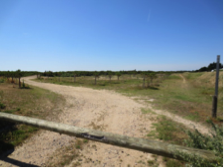 chemin d'Orbigny 5
