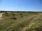 chemin d'Orbigny 7